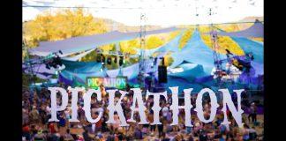 pickathon - music-industry-weekly